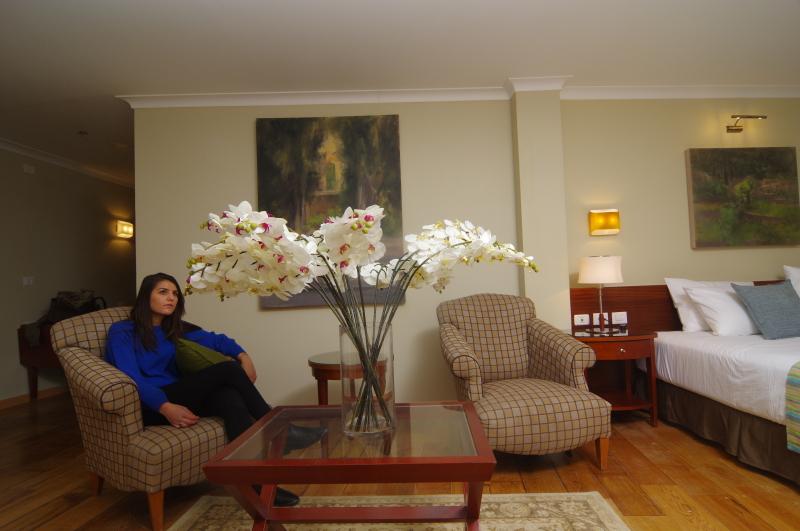 2014 12 17 Hotel of nice family  Yaacov  Harlap photo 050 7482283 02 6433544 Jerusalem904) (14)